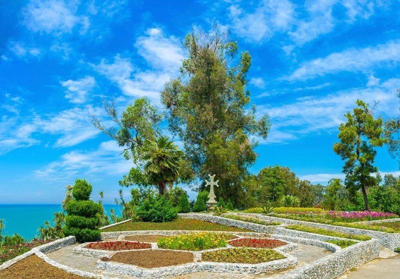 поехать в ботанический сад батуми