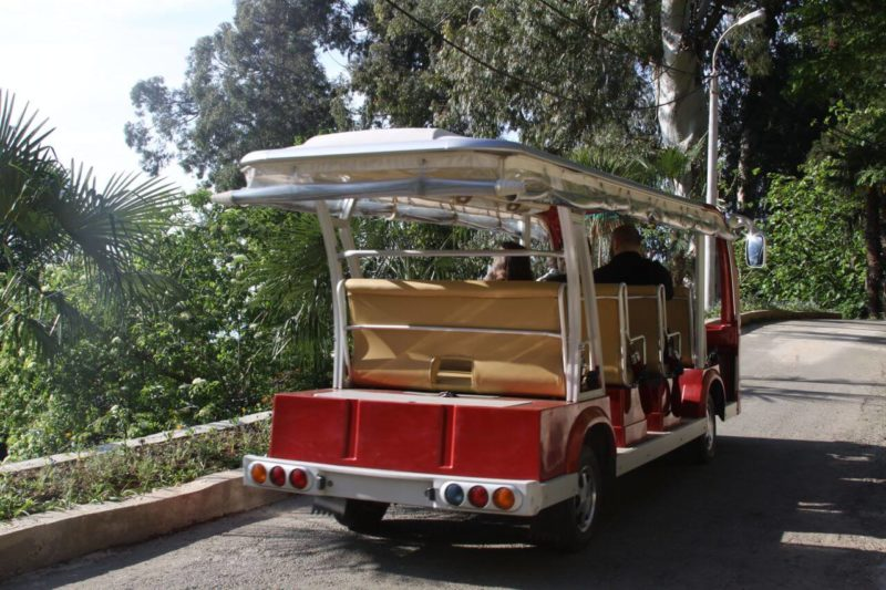 экскурсия по ботаническому саду батуми