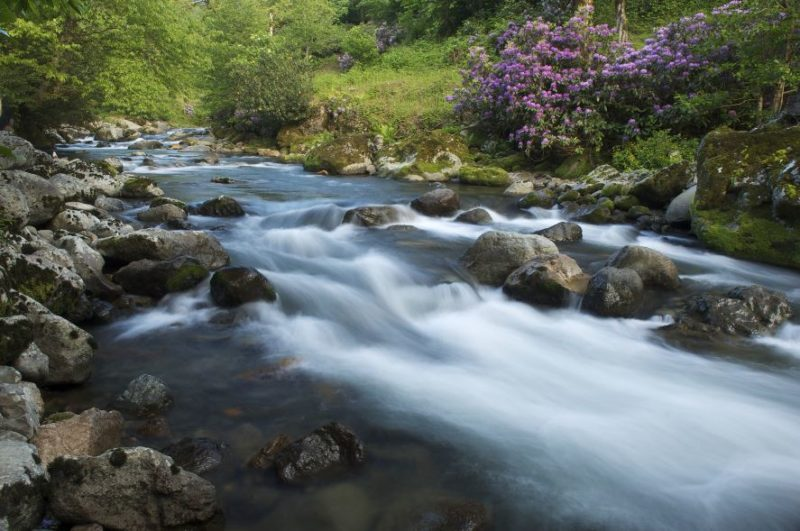 мтирала горная река